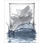 Πάγος Λέπι Scotsman